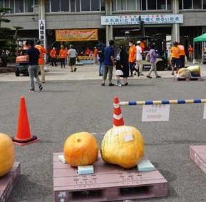 第34回日本一どでカボチャ大会開催されました。