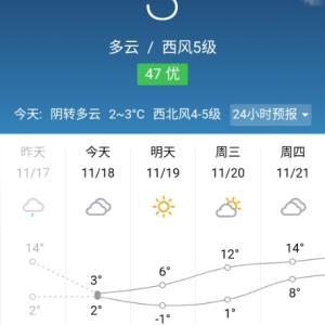 今日の最高気温が3度、最低気温が2度、明日の最低気温は-1度!