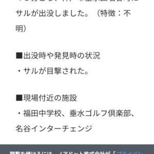 神戸市垂水区・須磨区の住宅街に「猿」出現相次ぐ