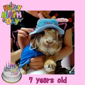 眩稀の7歳のお誕生日
