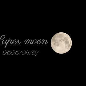 月に願いを…明けない夜はない