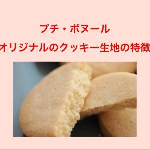 今夜20日21時~オンラインクッキーレッスン募集開始します。