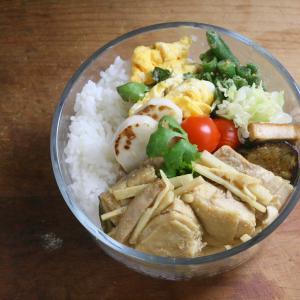 思わずメモを取った爽やか主菜 即席鶏肉のグリーカレー煮込み弁当
