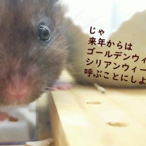 お名前いろいろ(4月)