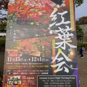 姫路城西御屋敷跡庭園~好古園 庭園と紅葉~