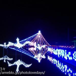 【湯梨浜町】幻想的な光の世界!あやめ池イルミネーション2020/あやめ池公園
