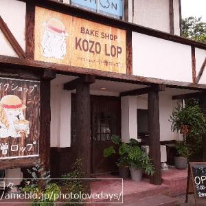 【北栄町】パンと焼き菓子のお店「ベイクショップ 小僧ロップ」の激うまシフォンケーキ