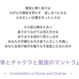 【骨とチャクラと星座のマントラ】超氣聖骨と波動的な機能をみる