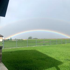 虹がたくさん