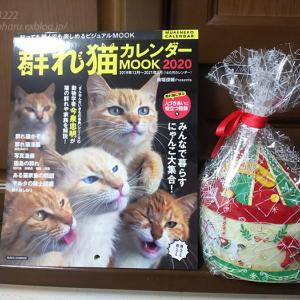 2019 クリスマスプレゼントなど