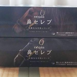 鼻セレブ 華麗なる名馬シリーズ~スクリーンヒーロー&タニノギムレット