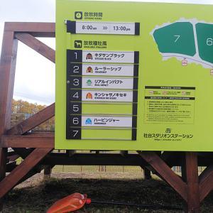 2019.11.11 社台スタリオンステーション一般放牧地