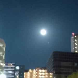 明日は魚座の満月