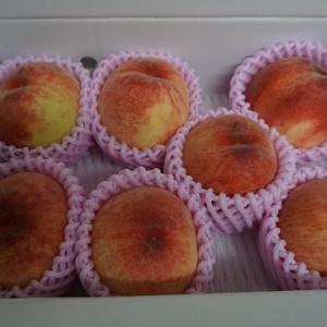 あづま果樹園の桃が美味しかった!!