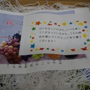 (7回目)内田フルーツ農園のシャインマスカット購入したよ!