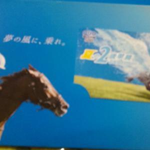 【当選】お馬さんのクオカード他