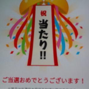 当選♪ネスカフェ ゴールドブレンド バリスタ シンプル