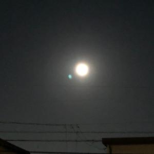 ふたりで月を見た♪