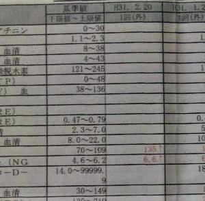 【糖尿病】2月の検査結果&ビックリなコト!