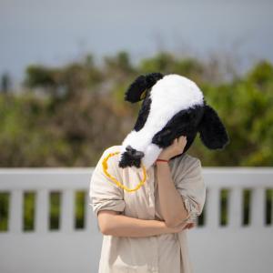 【一口馬主】友駿3歳馬、いまだ0勝【エフォールシチーに出資中】