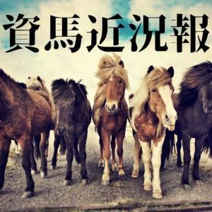 我が家の一口馬主近況報告2020年8月2週/エポカ引退の話
