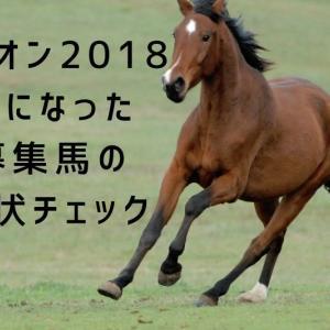 ユニオン2018募集馬(2017年産馬)で気になった馬の現状を見てみる