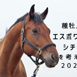 種牡馬エスポワールシチーについて考えるin2020