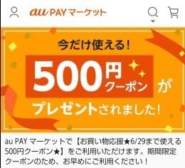 これから払う保険料は311万円