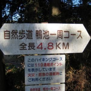 小野市「鴨池一周ハイキングコース」
