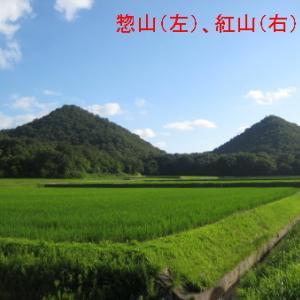 小野市「惣山(小野富士)、紅山 夏の姿」