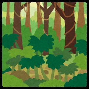 隣のジャングル