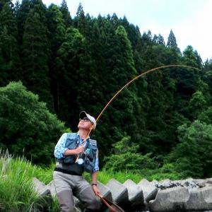 タイミング 良くも悪くも 釣りの味