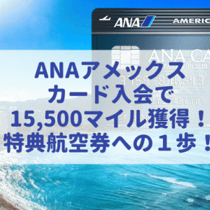 ANAアメックスカード入会で最大1.5万マイル獲得!その具体的なステップについて詳しく解説。(2020年8月最新版)