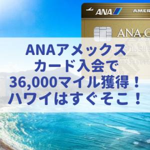 ANAアメックスゴールド入会で最大3.6万マイル獲得!新規入会でマイルを大量獲得!(2020年8月最新版)