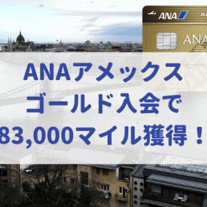 ANAアメックスゴールド入会で大量83,000マイル獲得!キャンペーン利用とポイントサイトどっちが得?(2019年10月最新版)