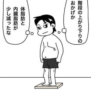 No.2011 階段の上がり下り運動で体が引き締まったはずなのにズボンがキツくなった⁉︎