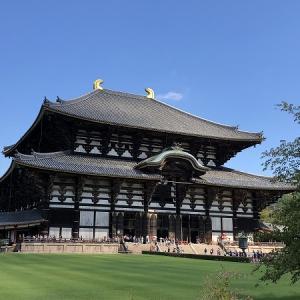 秋の行楽シーズン★子供とおでかけ!奈良の大仏を見に行った結果…