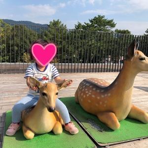 屋上庭園が素敵◆45億円かけて作ったのに利用者は半数以下!奈良公園バスターミナル…