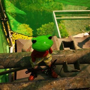 カエルの池ちゃん