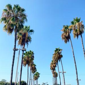 大気汚染のロサンゼルス。