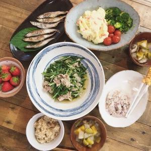 韓国で水菜を発見!