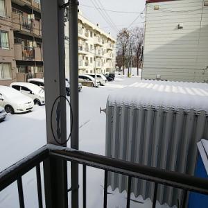 アダモの初雪