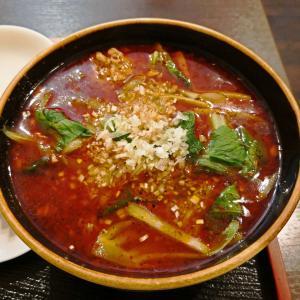 「四川料理 巴蜀」世界の渡部にテレビで絶賛されていた巴蜀で紅焼排骨麺(スペアリブの辛い麺)