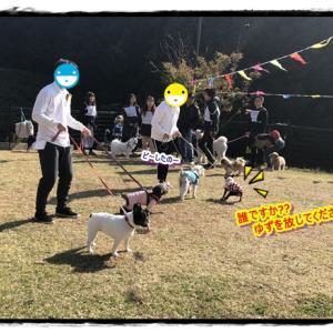 オーナー探し競技&借り犬競争ヾ(o´∀`o)ノワァーィ♪