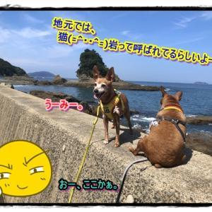 梅雨の合間のぅ、海~!!!