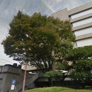 経営事項審査で静岡まで行ってきました~   ~ 今年最後の「けいしん」に滑り込みセーフ(笑) ~