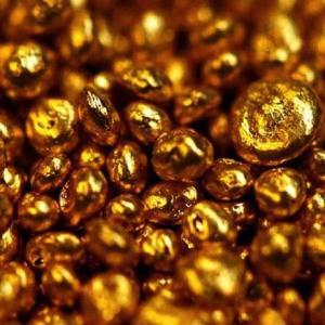 今日はゴールドラッシュの日!