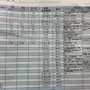 6月の血液検査