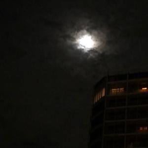 お月様.....昨夜は....