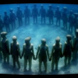 シーバスランキング2,019 水面下の人々♪
